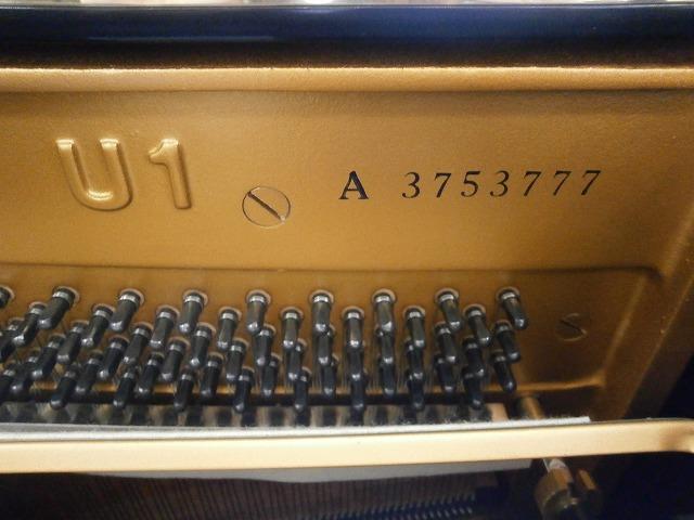 P3280031