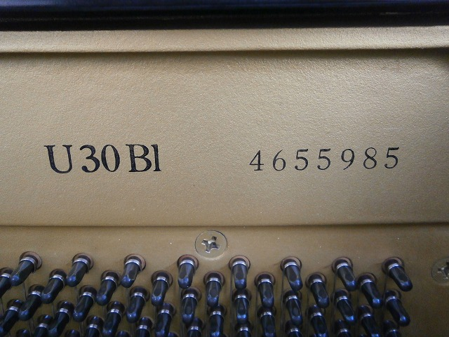 PC080049
