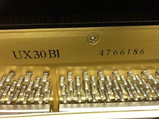 UX30BL6